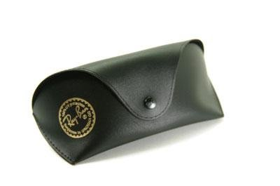 Etui Ray-Ban large XL 254A00